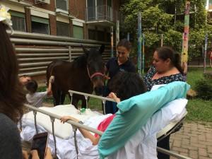 Una giornata all'ospedale di Alessandria