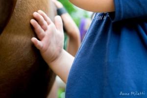 L'autismo in una frase: Voglio toccarti ma ho paura