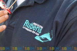 SBIM Rubens